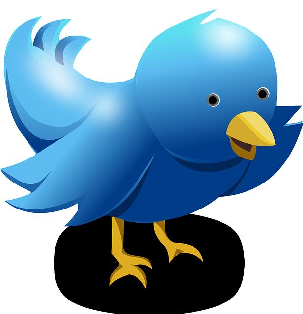 Twitter réseau social - stratégie de communication des hommes politiques